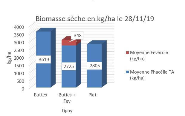 biomasse couvert