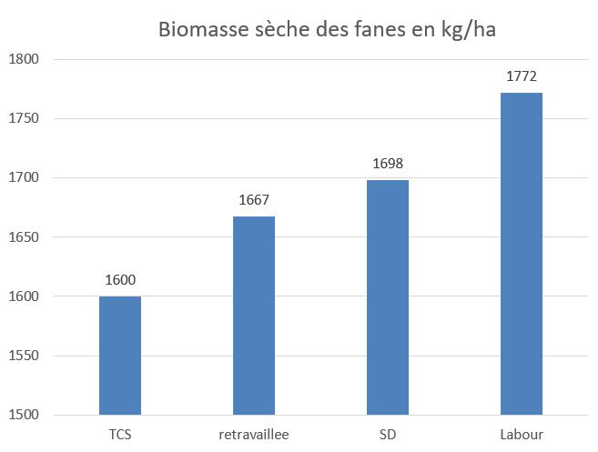 biomasse aérienne pdt
