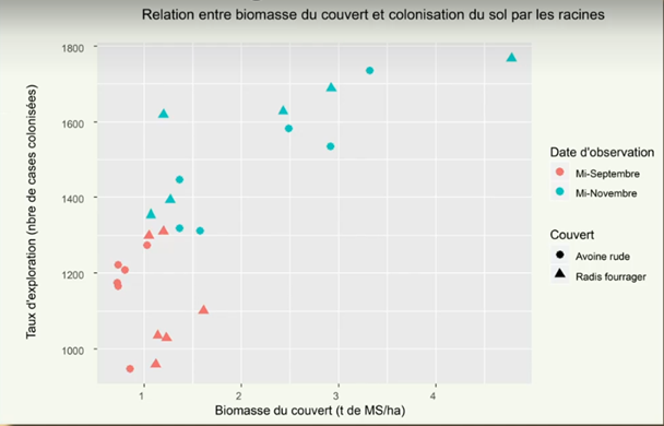 Biomasse couvert et racine agtransfert